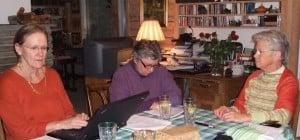 Styret 2010 -- Hanne, Anne og Kari